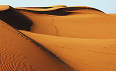 Reading Father: Sifting Sand