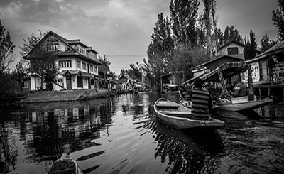 Kashmir: An Unending Story of Tragedy and Trauma