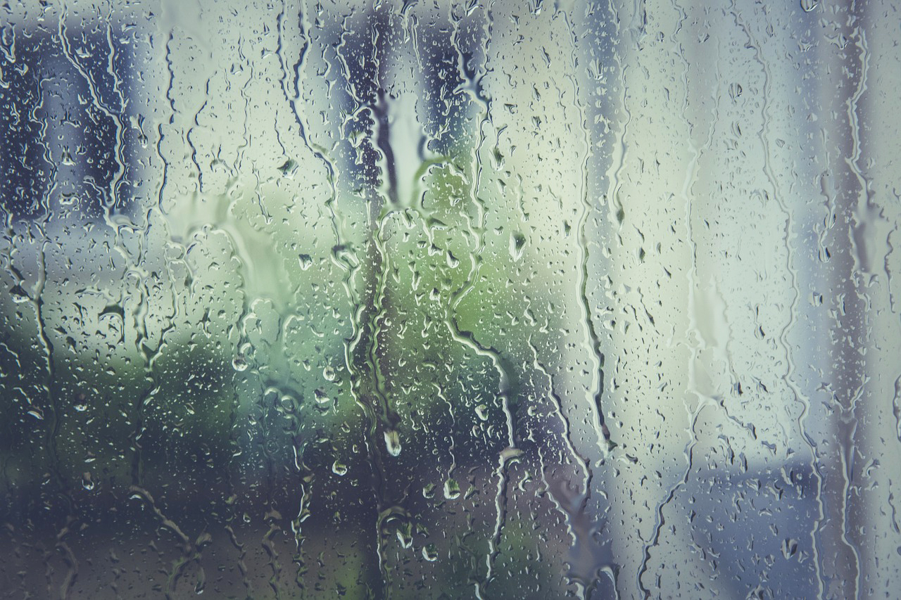 To the February Rain and other poems